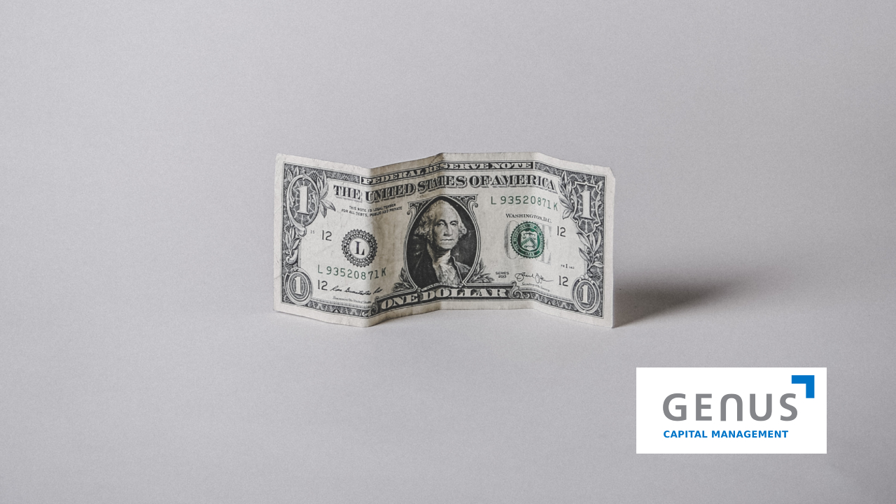 image of a dolar in a white background